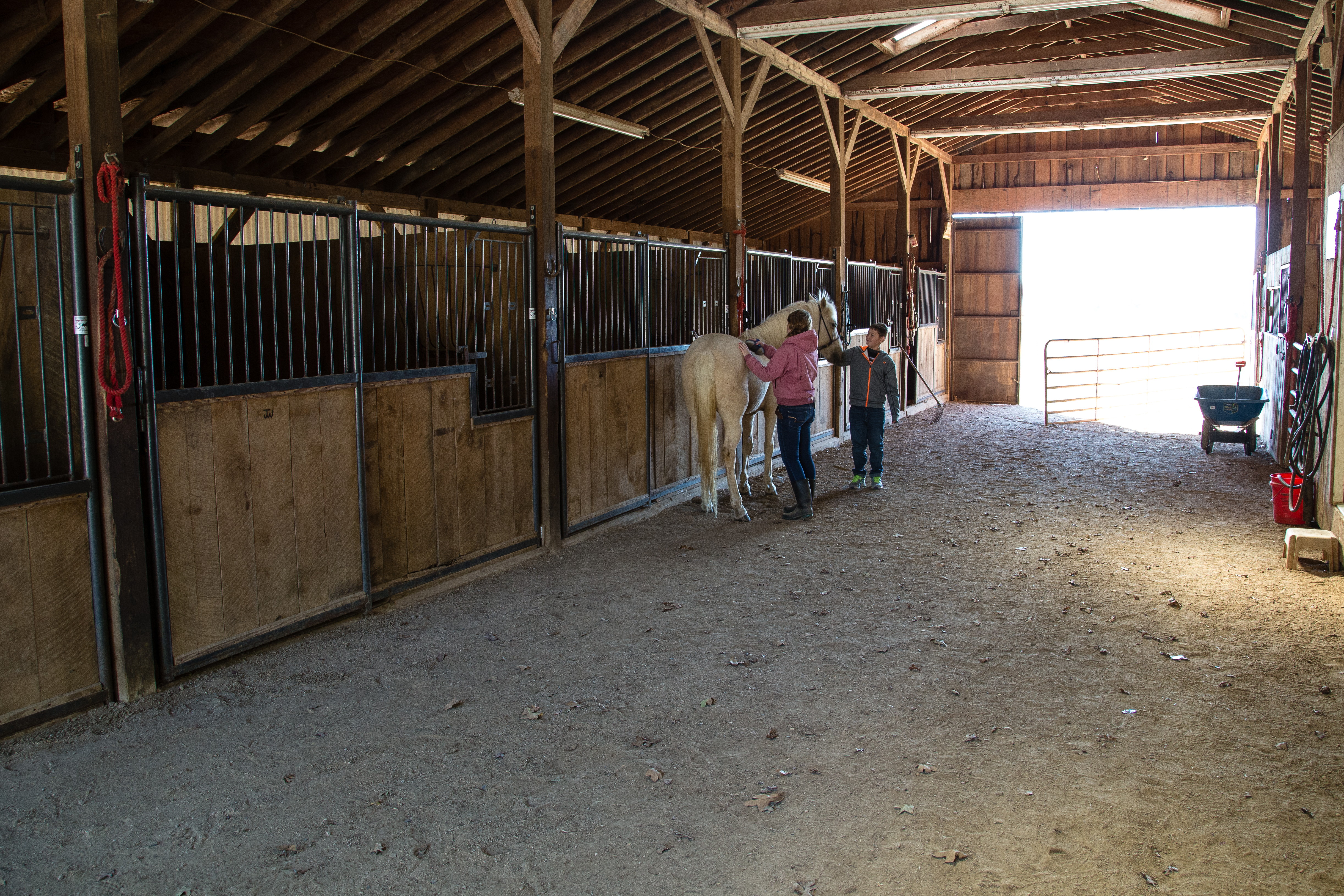 Home Smith Stables